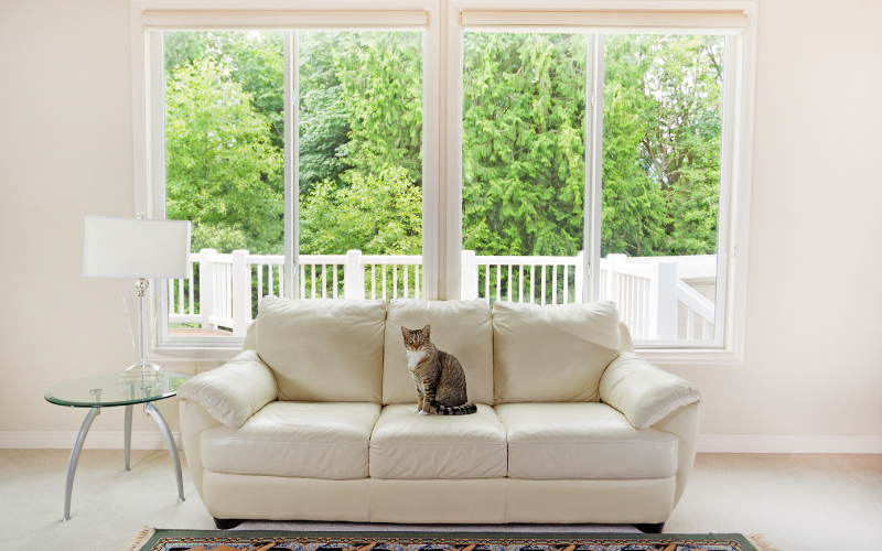 energy efficient windows in home
